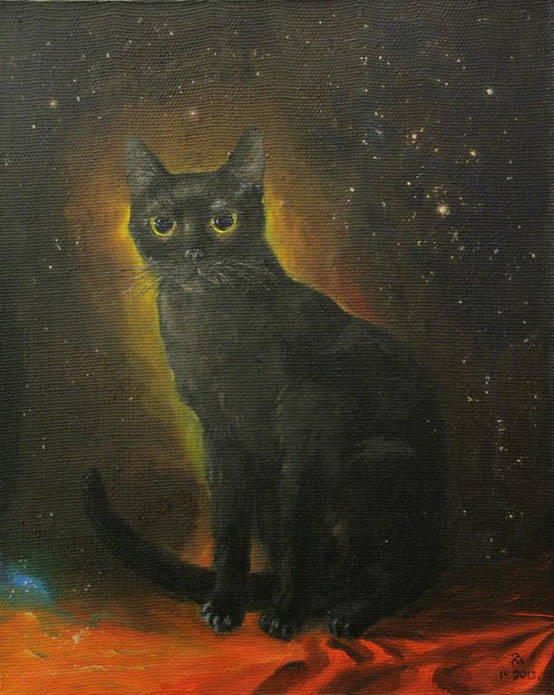 Кошка ночи